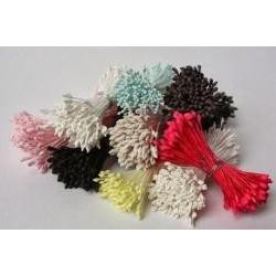 Kvetinové piestiky čierne kladivkové