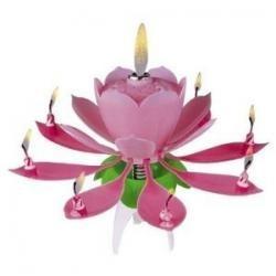 Hrajúci kvet ružový