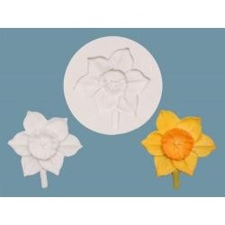 Narcis A002