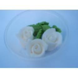 Ruža stredná biela