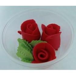 Ruža stredná červená