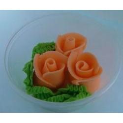 Ruža stredná oranžová