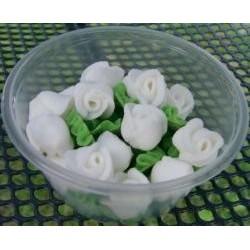 Ruža malá biela