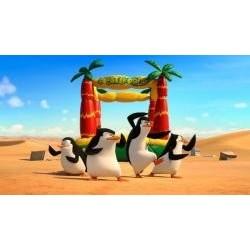 Vafla tučniaky z Madagaskaru 1