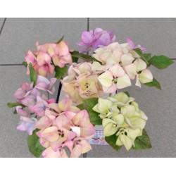 Vykrajovačka pl. okvetné listy hortenzie