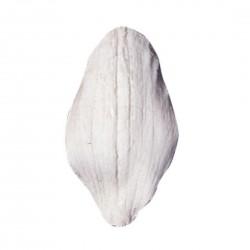 Silikónová forma Orchid petal