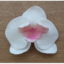 Vykrajovačka pl. orchidea Vanda